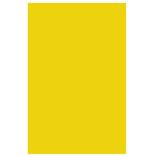 olio di insetto